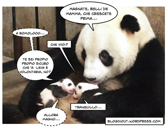panda_romolo_e_remolo