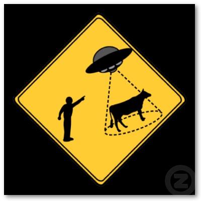 certezze in vacca